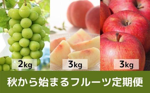 No.0637 【フルーツ定期便3回】ご家庭用 農家直送 福島の果物  ぶどう「シャインマスカット2Kg」もも「CX シーエックス3Kg」 りんご「サンふじ3Kg」