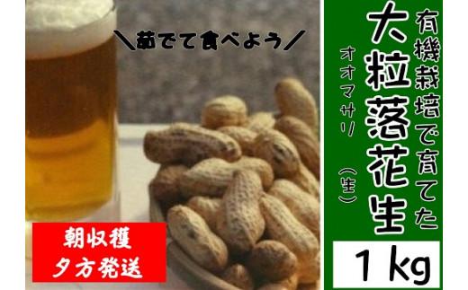 B1-06 【先行予約】有機栽培で育てたこだわりの大粒落花生1kg(おおまさり)