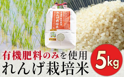 02-AA-4601・れんげ農法栽培米「ヒノヒカリ」(精米・5kg)