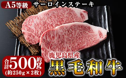 C-030 鹿児島県産黒毛和牛<A5等級>きりしま畜産厳選!黒毛和牛サーロインステーキ約250g×2枚!牛肉の中でも最高ランクのステーキ肉を冷凍でお届け【きりしま畜産】