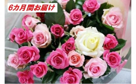 [№5672-0426]【20本×6カ月】生産者直送 有機栽培で育った朝切りバラの花束 花の定期便