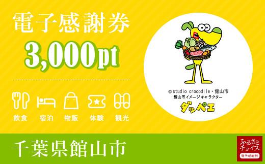 館山市電子感謝券 3,000pt(1pt=1円)