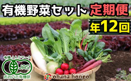 有機JAS認証★ohana本舗厳選オーガニック野菜セット定期便≪年12回コース≫