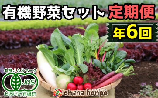 有機JAS認証★ohana本舗厳選オーガニック野菜セット定期便≪年6回コース≫