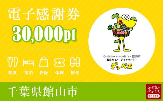 館山市電子感謝券 30,000pt(1pt=1円)