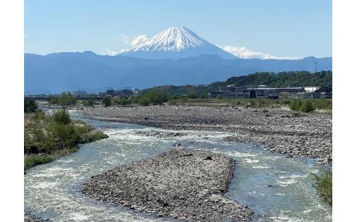 武田橋からの富士山