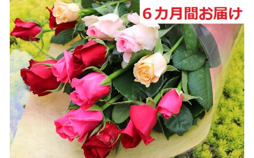 [№5672-0427]【約15本×6カ月】生産者直送 有機栽培で育った朝切りバラの花束 花の定期便