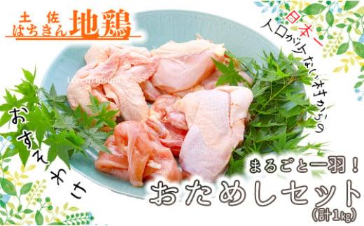 大川村土佐はちきん地鶏まるごと一羽おためしセット 計約1kg