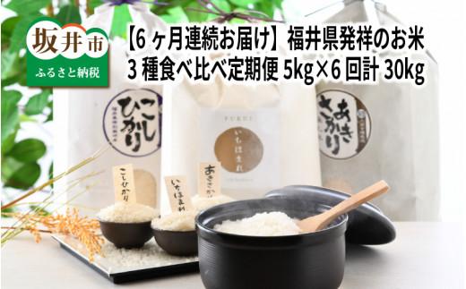 【6ヶ月連続お届け】 福井県発祥のお米 3種食べ比べ定期便 5kg×6回 計30kg [G-6101]
