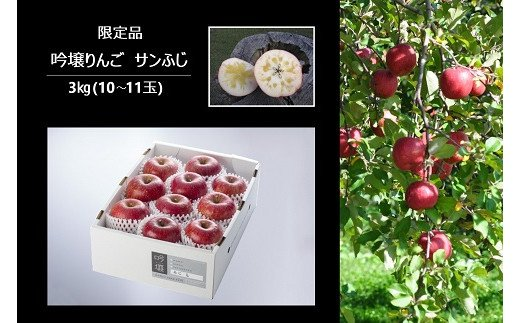No.0673 【限定100箱】りんご「サンふじ」 3㎏(10~11玉入り)