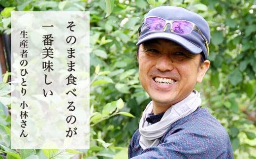 家業の農業を継ぐ前は調理師をしていた小林さんが、「そのまま食べるのが1番美味しい」と太鼓判を押すりんご。
