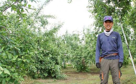 太陽の恵みをいっぱいうけて育った小布施のりんごをお楽しみください。