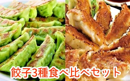062-1-06 餃子3種食べ比べセット