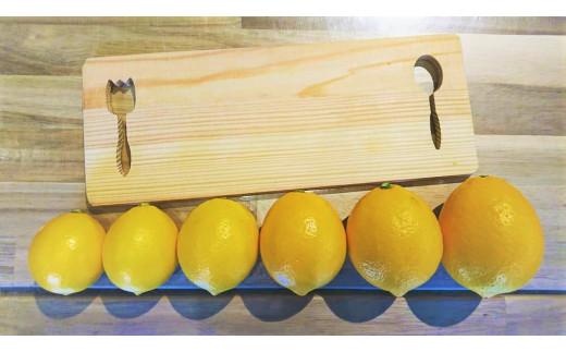 大きさも様ざま!熟すほどオレンジ色が強くなります!