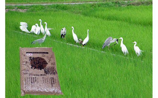 【2622-0121】【新米】【定期便】(隔月×3回お届け)無農薬栽培 コシヒカリ 玄米