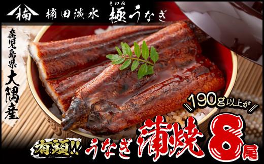 f0-005 楠田の極うなぎ蒲焼き 超特大 8尾