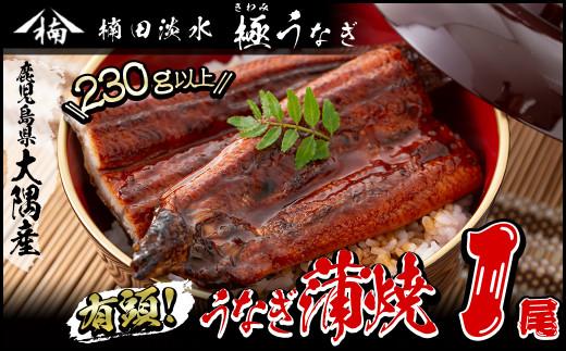 a0-007 楠田の極うなぎ蒲焼き超特大1尾