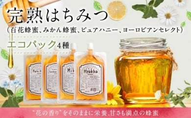 蜂蜜エコパック4点セット(百花、みかん、ヨーロピアン、アルゼンチン)