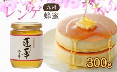 <国産>九州レンゲ蜂蜜【300g】採蜜できる量が少ない貴重な純粋蜂蜜