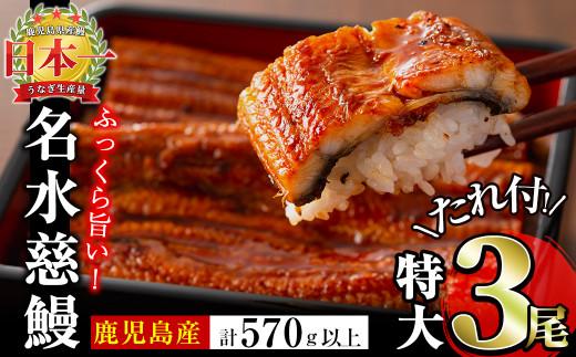 b5-064 鹿児島県産うなぎ蒲焼名水慈鰻 特大3尾