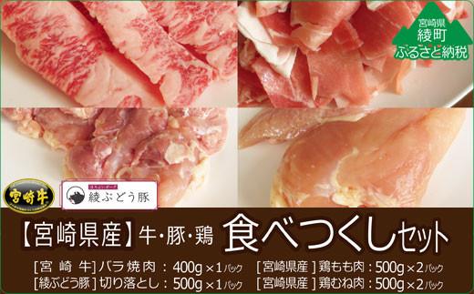 36-44_宮崎県産牛・鶏・豚肉食べつくし4種セット 2.9kg