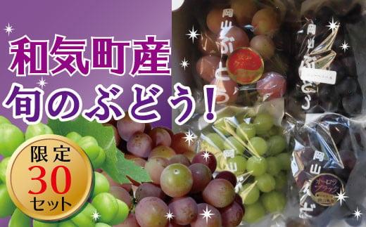 yy-4 おいしいぶどう3種3色ベストミックスセット(シャインマスカット、ニューピオーネ、安芸クイーン各1~2房)