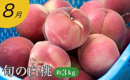 数ある白桃の中から、最高に美味しい旬の白桃をお届けします。