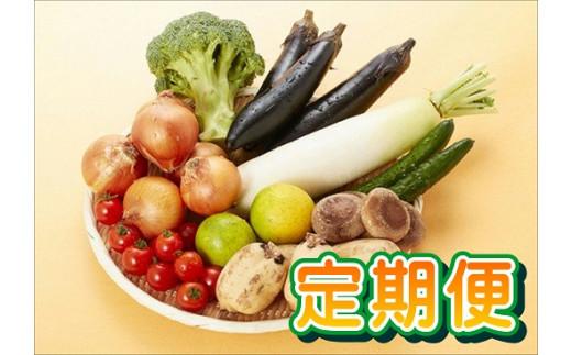 Q-49 【6回定期便】肥前の国のお野菜詰め合わせセット(8~10品目)