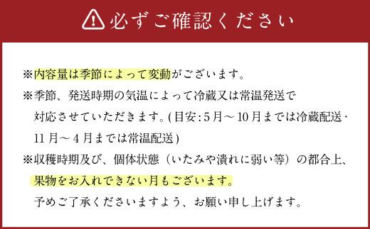 【定期便 毎月12ヶ月】生産者直売所発!おまかせ旬のお野菜・果物セット!