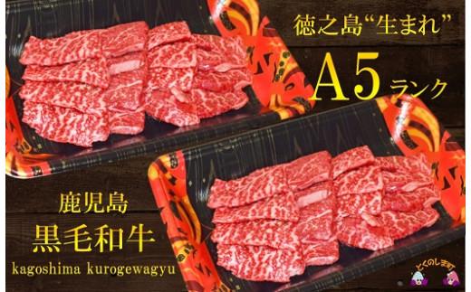 """878徳之島""""生まれ""""A5ランク鹿児島県産黒毛和牛赤身焼肉""""幸せ""""ギフト"""
