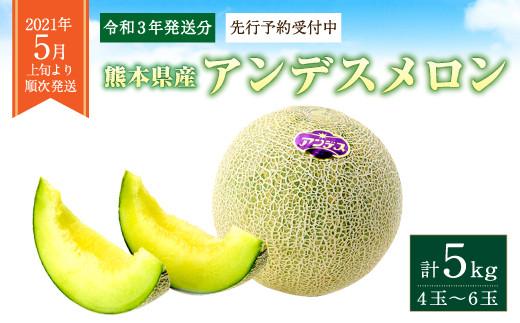 【2021年5月発送】アンデスメロン 4玉~6玉(1箱5kg)