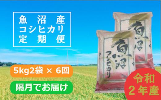 魚沼産コシヒカリ定期便 5kg2袋×6回/隔月でお届け(JA越後おぢや)