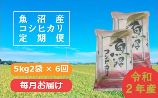 魚沼産コシヒカリ定期便 5kg2袋×6回/毎月お届け(JA越後おぢや)