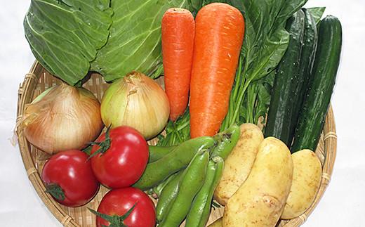B-021.新鮮野菜の詰合せ