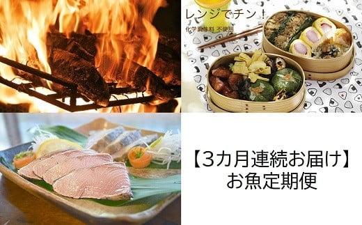 [1343]【3カ月連続お届け】お魚定期便