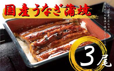 【受付再開!】国産 うなぎ蒲焼3本セット