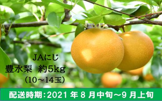K196-05 JAにじ 豊水梨  10~14玉 (約5kg)