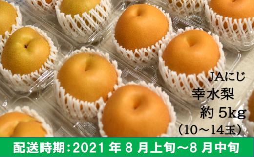 K190-05 JAにじ 幸水梨 5kg箱 10~14玉