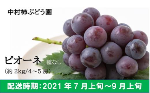 K144 中村柿ぶどう園 ピオーネ 4~5房 (約2kg)