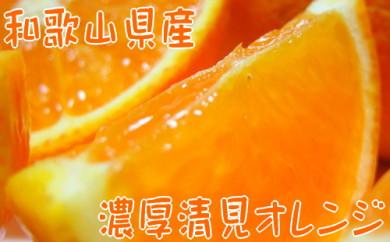 【春の美味】【農家直送】濃厚清見オレンジ(ご家庭用)4kg
