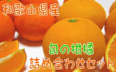 【農家直送】旬の濃厚柑橘詰め合わせセット(ご家庭用)3kg