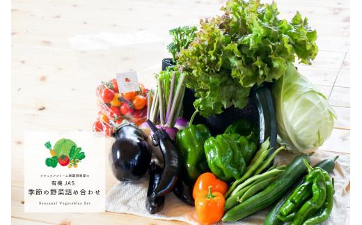 【有機JAS認定】季節の野菜詰め合わせ~厳選セット~