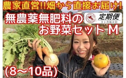 BR004 【3ヶ月毎定期便4回】松戸市の4人家族から無農薬無肥料の旬の野菜セットM