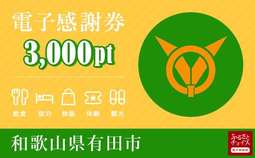 有田市電子感謝券 3,000pt(1pt=1円)