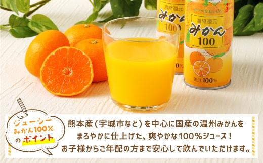 JA ジューシー みかん 100% ジュース 190g×30缶セット