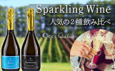 【ギフト用】【OcciGabi Winery】スパークリングワイン☆人気の2種飲み比べセット2☆(オチガビブラン・シャルドネ)