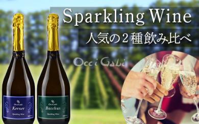 【OcciGabi Winery】スパークリング・ワイン☆人気2種のみ比べセット☆(バッカス・ケルナー)