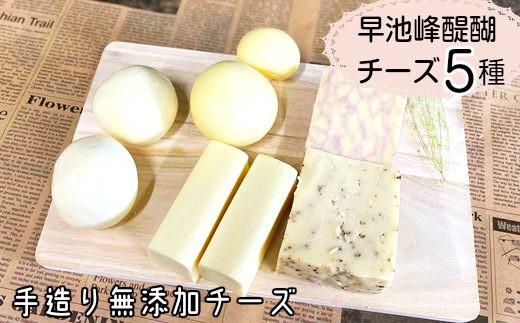 早池峰醍醐 手造り無添加チーズ5種類セット 【657】