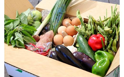 05-05_綾・早川農苑のこだわり野菜&ジャム&加工品セット