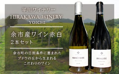 平川ワイナリー余市産ワイン赤白2本セット(化粧箱入り)